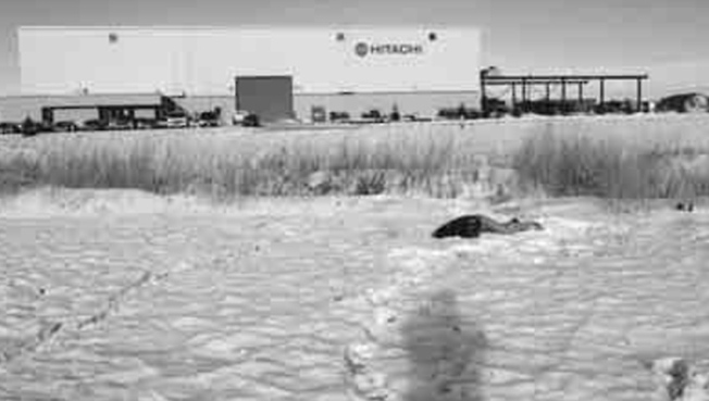 A picture from the scene where Neil Stonechild's body was found Nov. 29, 1990. (Neil Stonechild inquiry)