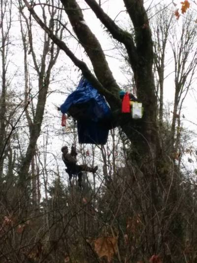 RCMP currently going up to the tree sit. Photo: Burnaby Mountain Updates\Facebook