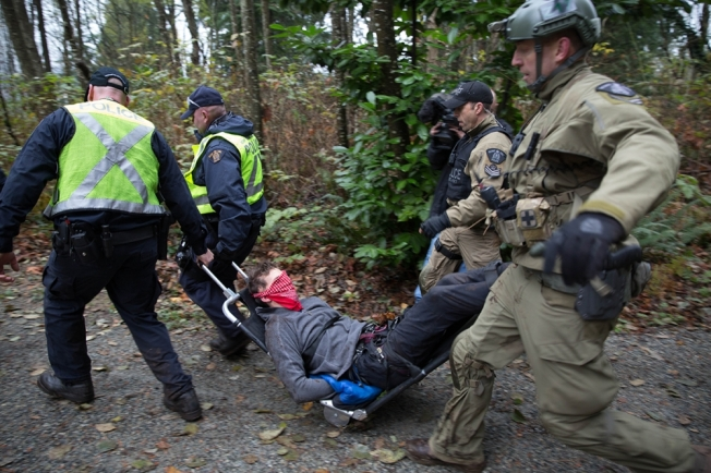 Burnaby Mountain on November 20, 2014. JACKIE DIVES