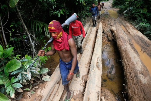 Ka'apor Indians hike during a jungle expedition to search for and expel loggers in the Alto Turiacu Indian Territory.