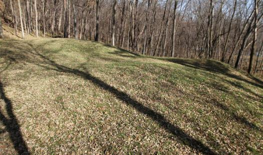"In this Nov. 8, 2010 file photo are the ""Three Mounds"" site at at Effigy Mounds National Monument in Harpers Ferry, Iowa. Former Effigy Mounds superintendent Phyllis Ewing contends in an age discrimination lawsuit filed in federal court last week that she was unfairly blamed and fired for illegal construction projects that damaged one of the nation's most sacred American Indian burial sites. (The Des Moines Register via AP, Justin Hayworth)"