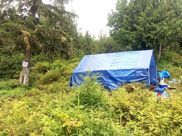 A tent and camp has been set up on Lelu Island. — Image Credit: Stop Pacific NorthWest LNG/Petronas On Lelu Island / Facebook.Com