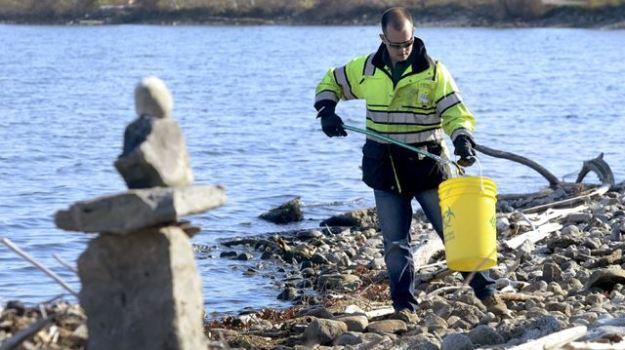 SHORELINE CLEANUP Barry Gray,The Hamilton Spectator Accuworx emergency response team leader Logan Barrett picks up sharps Monday along Hamilton's Waterfront Trail shoreline.