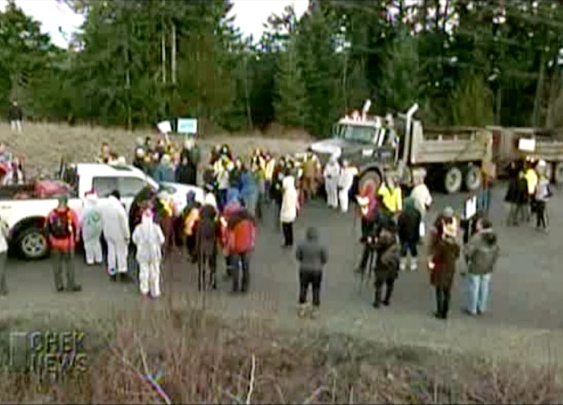 RCMP arrested nine people Tuesday for blocking a roadway outside a contaminated soil landfill near Shawnigan Lake.