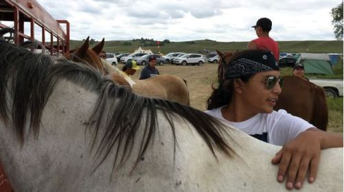 Tech Big Crow, 18, cares for Blue, one of the horses he and others have brought to the protest site, at the confluence of the Cannonball and Missouri rivers. (William Yardley/LA Times)