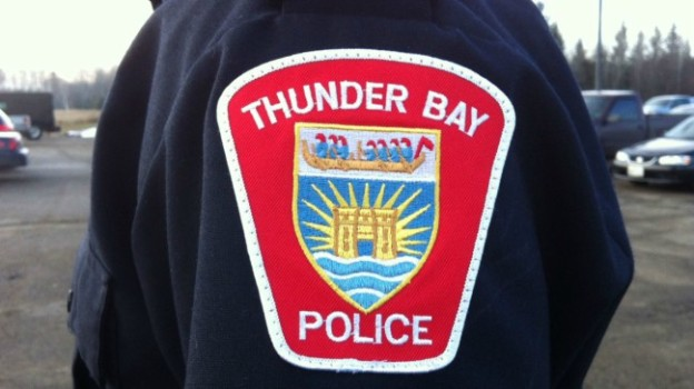 Thunder Bay police said they 'would like to apologize to our Indigenous community for the hurt' that may have been caused by comments allegedly made by a police officer on social media.