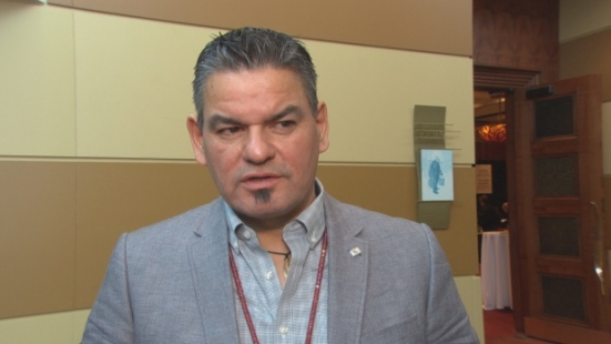 Ontario Regional Chief Isadore Day says Indigenous activists from Canada have gone to Standing Rock, N.D., to learn tactics from protesters there against construction of the Dakota Access pipeline. (CBC)